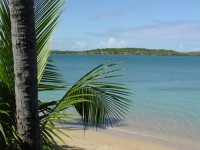 Top attractions in Port Antonio